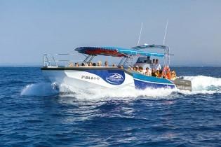 classic tour boat excursions a cabrera
