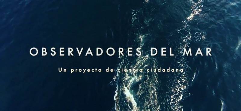 https://www.excursionsacabrera.es/images/640/422